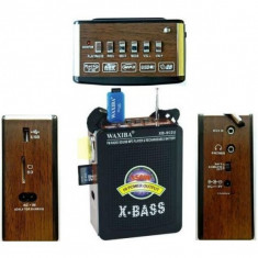 Boxa Cu Radio Si MP3 Portabil - Echipament karaoke