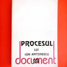 PROCESUL LUI ION ANTONESCU Document Ioana C - Istorie