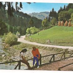 % carte postala (marca fixa)-M-TII APUSENI-Valea Ariesului, Necirculata, Printata