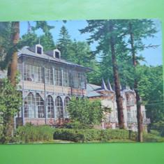 HOPCT 11318 SLANIC MOLDOVA -VILA BRADUL -JUD.BACAU [CIRCULATA] - Carte Postala Moldova dupa 1918, Printata
