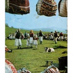 Carte Postala / vedere 1966 DEC, Sambra la oi satul Moiseni, circulata, traditii - Carte Postala Maramures dupa 1918, Necirculata, Printata
