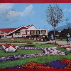 Vedere/ Carte postala - Predeal - Carte Postala Banat dupa 1918, Circulata, Printata