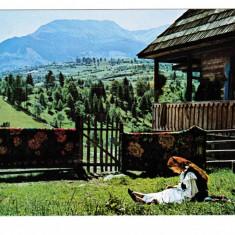 Carte Postala / vedere 1974, Muntii Rodnei, Vf Pietrosul, Maramures, costum trad, Necirculata, Printata