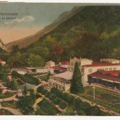 Baile Herculane - Herkulesfurdo - Casino si parcul 1935 - Carte Postala Banat 1904-1918, Circulata, Printata