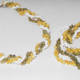 Set melcisori origine sri lanka 3 culori