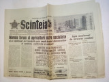 Ziar SCANTEIA - sambata 21 februarie 1981 Nr. 11975