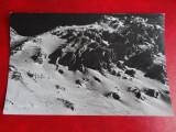 Aug15 - Vedere/ Carte postala - Fagaras, Circulata, Printata