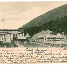 2051 - Bacau, SLANIC MOLDOVA, Cazinoul Regal - old postcard - used - 1902 - Carte Postala Moldova pana la 1904, Circulata, Printata
