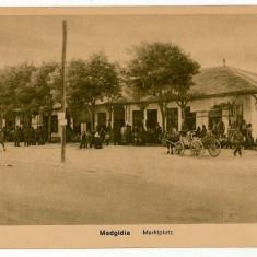 1511 - Dobrogea, MEDGIDIA, Market - old postcard - used - Carte Postala Dobrogea 1904-1918, Circulata, Printata