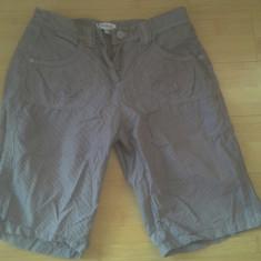 Pantaloni scurti Designer
