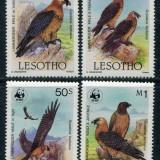 LESOTHO 1986 WWF PASARI - Timbre straine