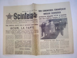 Ziar SCANTEIA - marti 24 februarie 1981 Nr. 11977