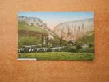 TURDA - 1917 - CIRCULATA