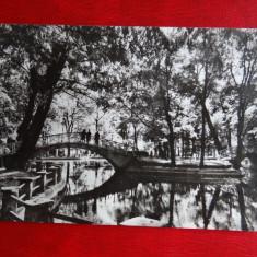 Aug15 - Vedere/ Carte postala - Botosani - Carte Postala Banat dupa 1918, Circulata, Printata