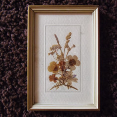 Tablou ierbar, cu flori, made in GDR, handmade, anii 80