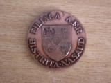 MBDP1 - EXPOZITIA FILATELICA - BISTRITA NASAUD - 9 MAI 1987
