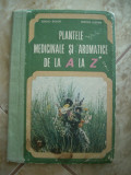 PLANTE AROMATICE DE LA A LA Z - BOJOR