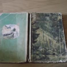 Gellu Naum - Tabara din munti (ilustratii D. Iura sau IURIE DARIE) + BONUS - Carte de aventura
