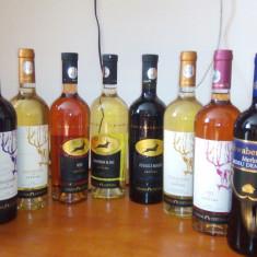 Vin podgoria ceptura, Romania, Negru, Sec