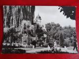 Aug15 - Vedere/ Carte postala -  Radauti, Circulata, Printata
