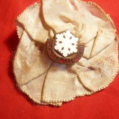 Isigna cu buton si Cocarda alba - Jocuri Sportive Iarna 1949 Polonia