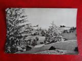 Aug15 - Vedere/ Carte postala - Pe Muntele Semenic, Circulata, Printata
