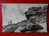 aug15 - Vedere/ Carte postala - Ranca - Muntii Parang