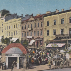 CERNAUTI PIATA DEBIT DE TUTUN FARMACIE - Carte Postala Bucovina dupa 1918, Necirculata, Printata