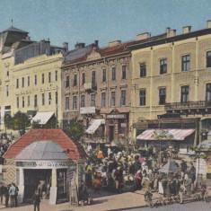 CERNAUTI, PIATA, DEBIT DE TUTUN, FARMACIA - Carte Postala Bucovina dupa 1918, Necirculata, Printata