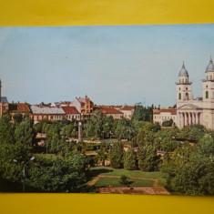 HOPCT 15174  SATU MARE -PARCUL LIBERTATII   -JUD SATU MARE  [CIRCULATA]