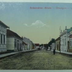 ORASTIE - SZASZVAROS - BROOS - DRUM DE TARA - INCEPUTUL ANILOR 1900 - Carte Postala Transilvania 1904-1918, Necirculata, Fotografie