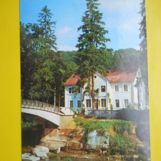 HOPCT 15242 BISTRITA-TERASA MOTELULUI CODRISOR -JUD BISTRITA NASAUD[CIRCULATA] - Carte Postala Transilvania dupa 1918, Printata