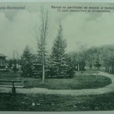 OCNA MURES - PARCUL CU PAVILIONUL DE MUZICA SI BERARIA - INCEPUT DE 1900 - Carte Postala Transilvania 1904-1918, Necirculata, Fotografie