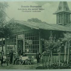 OCNA MURES - COFETARIA DIN PARCUL BAILOR -INCEPUT DE 1900 - Carte Postala Transilvania 1904-1918, Necirculata, Fotografie