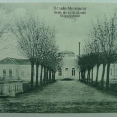 OCNA MURES - BAILE DE CURA SARATA - INCEPUT DE 1900 - Carte Postala Transilvania 1904-1918, Necirculata, Fotografie