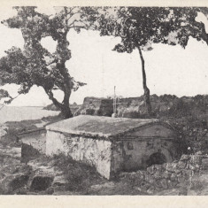 ROMANIA CARTE POSTALA CETATEA ALBA-ISVORUL SF.GHEORGHE,LOT 2 CP, Necirculata, Printata