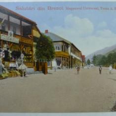 BREZOI - MAGAZINUL UNIVERSAL TOMA A. BOJENESCU - ILUSTRATA PUBLICITARA - RARA - Carte Postala Oltenia 1904-1918, Necirculata, Fotografie