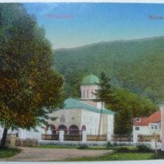 MANASTIREA COZIA PRIVITA DIN FATA - INCEPUT DE 1900, Necirculata, Fotografie
