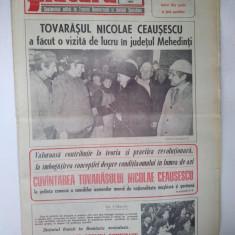 Ziarul FLACARA - vineri, 6 martie 1987
