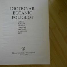 C. VACZY--DICTIONAR BOTANIC POLIGLOT