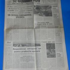 ZIARUL ROMANIA LIBERA 8 FEBRUARIE 1982 - PROBLEMA DISCIPLINEI IN ZOOTEHNIE (01113
