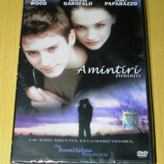 DVD FILM THE BUMBLEBEE FLIES ANYWAY / AMINTIRI PIERDUTE . NOU. SIGILAT. SUBTITRARE IN LIMBA ROMANA - Film drama