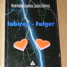 MARIE-NOELLE SCHURMANS, LORAINE DOMINICE - IUBIREA-FULGER. eseu de sociologie - Carte Sociologie