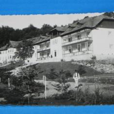 Carte postala fotografie veche BRADET HOTELURILE FOTO EMANOIL SARBU DIN PITESTI . judetul arges. foarte rara (v035 - Carte Postala Muntenia dupa 1918