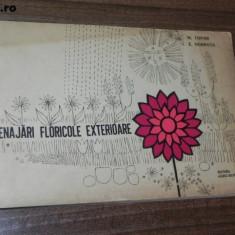 M TOPOR, E DOBROTA - AMENAJARI FLORICOLE EXTERIOARE - Carte Hobby Amenajari interioare