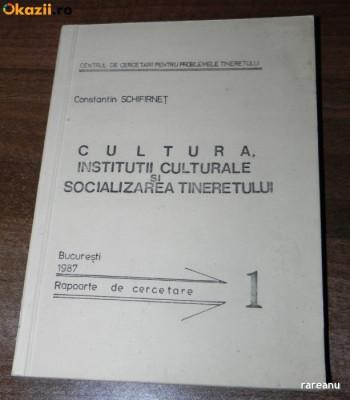CONSTANTIN SCHIFIRNET - CULTURA. INSTITUTII CULTURALE SI SOCIALIZAREA TINERETULUI. RAPOARTE DE CERCETARE foto