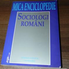STEFAN COSTEA (COORD) - MICA ENCICLOPEDIE DE SOCIOLOGI ROMANI. dictionar - Carte Sociologie