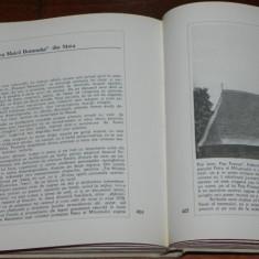 MONUMENTE ISTORICE BISERICESTI DIN EPARHIA ORADIEI. BIHOR SALAJ SI SATU-MARE - Carte Arta populara