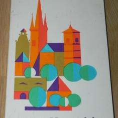 I DELEANU - VALEA MURESULUI - GHID TURISTIC - Carte Geografie