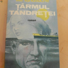 ILIE TANASACHE - TARMUL TANDRETEI. ROMAN DE DRAGOSTE - Roman dragoste